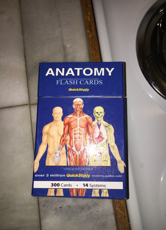 Quick Study Anatomy Flash Cards For Sale In Eugene Or Offerup