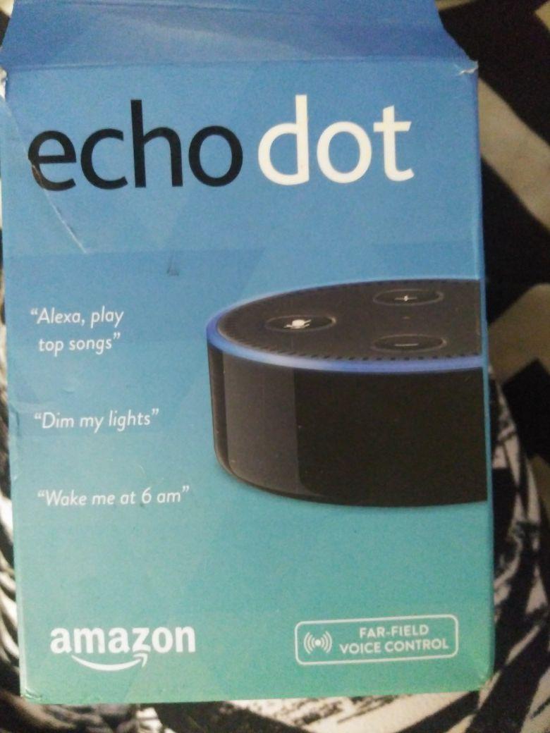 Echo dot (alexa)