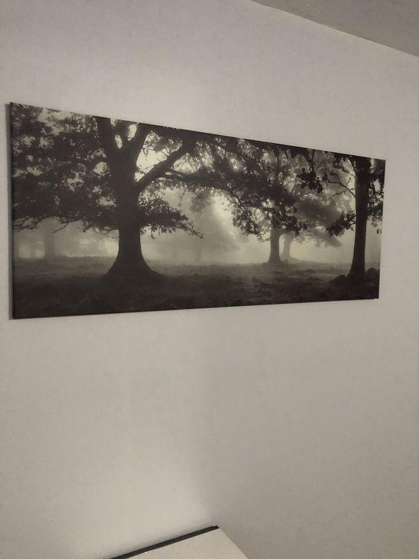 Ikea Wall Art Bjorksta For Sale In Pasadena Ca Offerup