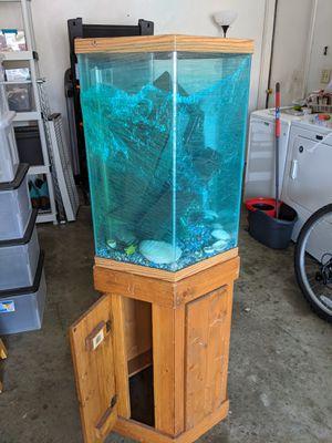 Photo 30 gal hexagon fish tank