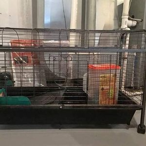 Gunnie pig cage for Sale in Baltimore, MD