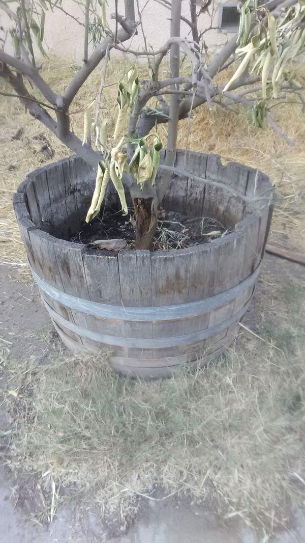 Wine Barrel Planter For Sale In Visalia CA
