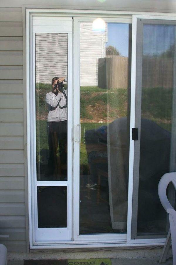 Pet Safe Large Dog Door Slider Insert Pet Supplies In Lakewood Wa
