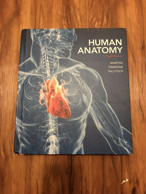 Human Anatomy Eighth Edition Martini Timmons Tallitch For Sale In