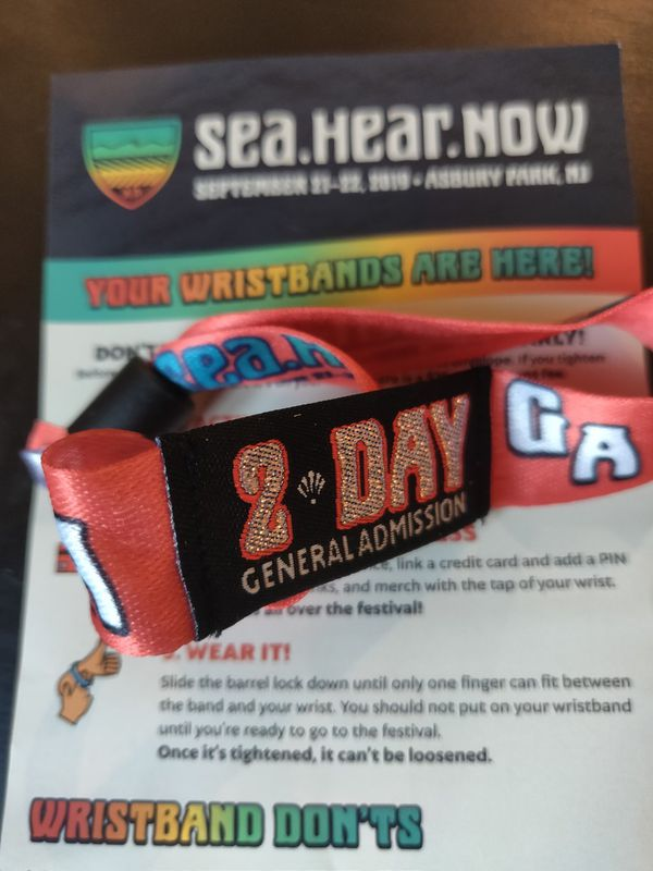 Sea Hear Now Concert Festival 2 day ticket for Sale in Brooklyn, NY -  OfferUp