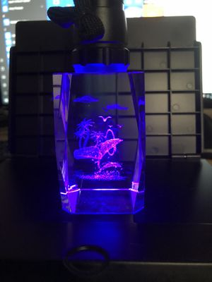 ROSE 3D Laser Chrystal Glass Etched Swimming Dolphins Collectable for Sale in Winter Haven, FL