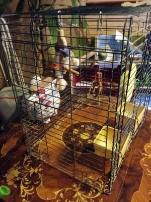 Bird cage - large for Sale in Germantown, MD