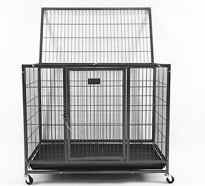 """37"""" heavy duty metal crate -used for Sale in Palm Harbor, FL"""
