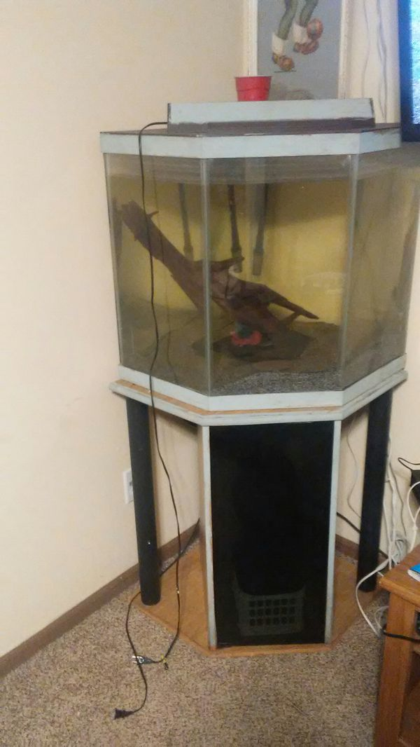 Fish Tank For Due To Upgrade Nice Size Corner Pentagon Shape Originally In Black Now Painted White Really Good Condition And No