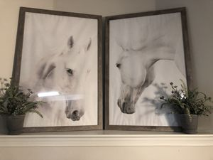 Large Rustic White Horse Pictures for Sale in Germantown, MD