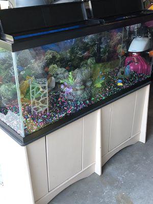 Photo 75 gallon cabinet fish tank