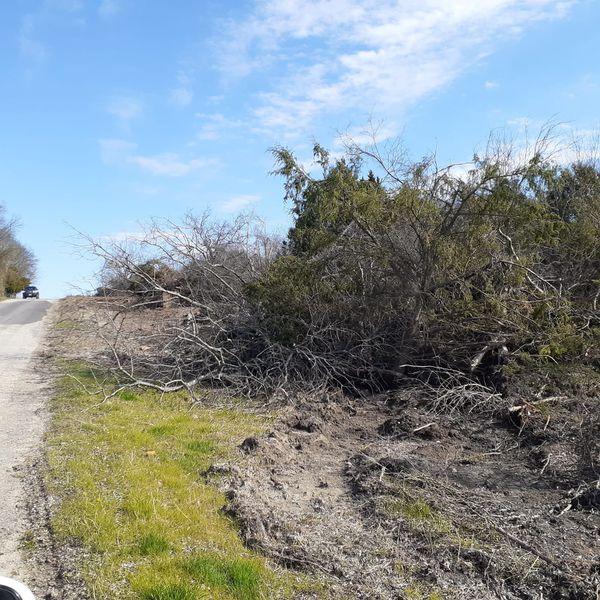 Vendo 4 Acres Para Su Rancho En Terrell Tx For Sale In
