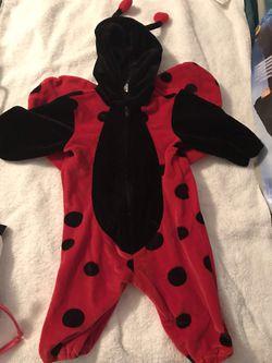 Lady bug costume. Thumbnail