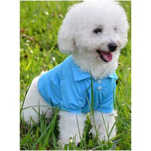 Dog Sky Blue Shirts for Sale in Baltimore, MD