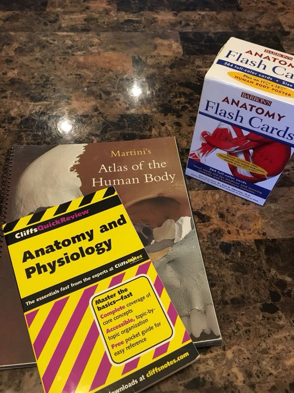 Anatomy and Physiology Study Materials for Sale in Phoenix, AZ - OfferUp