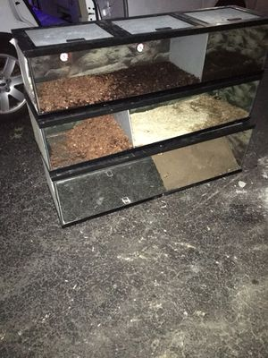 Reptile tanks for Sale in Gaithersburg, MD