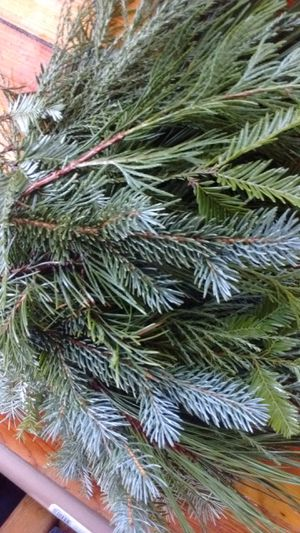 Fresh Wreath Boughs for Sale in Portland, OR