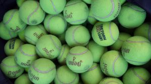 50 used tennis balls for Sale in Tampa, FL