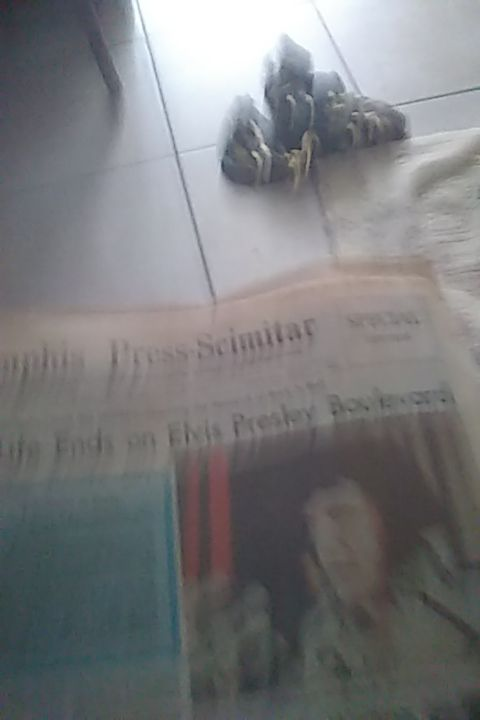 Elvis death paper from 1977