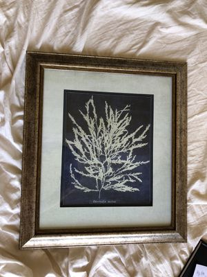 Floral Artwork in Rustic Brass Frame II for Sale in Los Angeles, CA