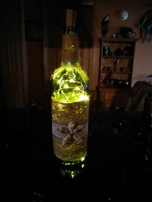 Decorative seashell bottle with lights. for Sale in Rustburg, VA