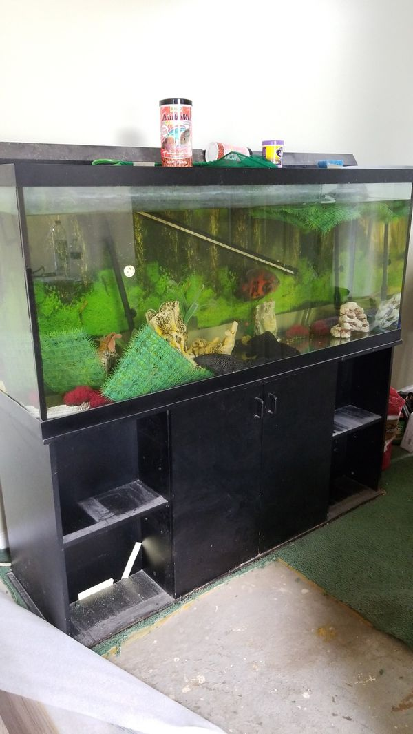 100 gallon aquarium with filters and stand for Sale in Fayetteville, GA -  OfferUp