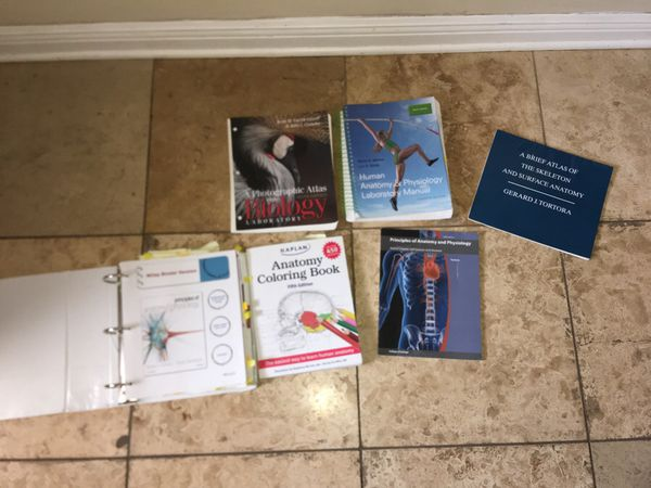 Anatomy and physiology bundle Gerard Tortora atlas sixth edition ...
