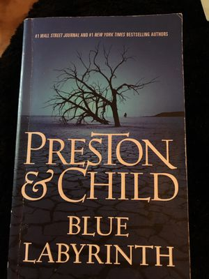 Preston and child blue labyrinth for Sale in Miami, FL