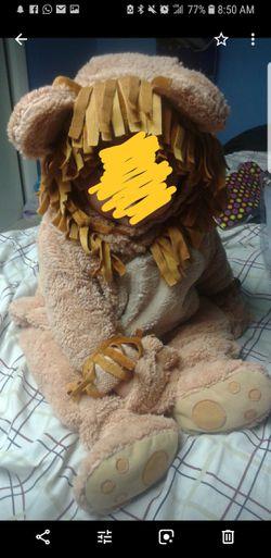 Baby lion Thumbnail