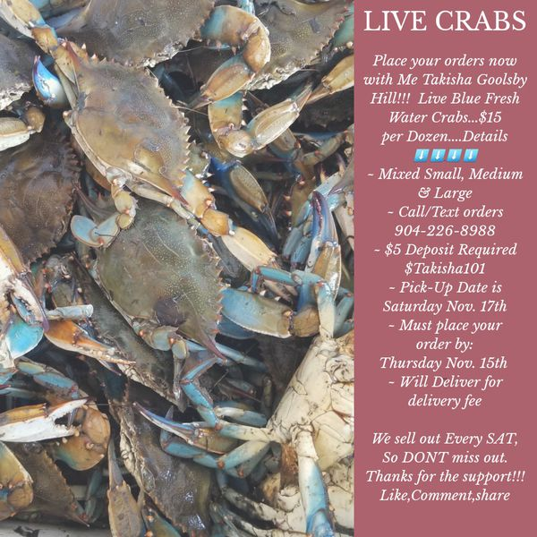 Live Blue Crabs for Sale in Jacksonville, FL - OfferUp