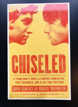 Chiseled: A Young Man's Guide to Shaping Character, True Toughness and a Life That Matters by Shaun Blakeney (Paperback) for Sale in Leesburg, VA
