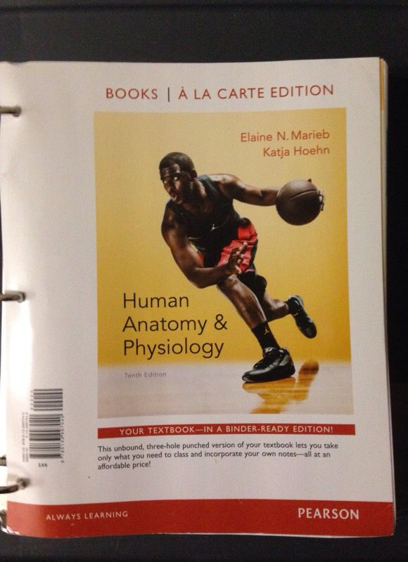 TCC Anatomy and Physiology book (Books & Magazines) in Virginia ...