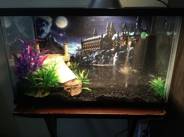 Aquarium Tank For In Corona Ca
