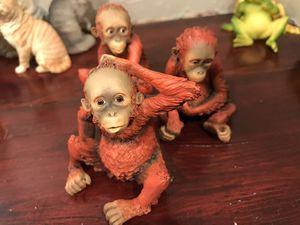 Photo Red Monkey 🐒