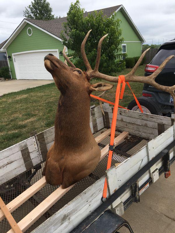 Elk Mount Household In Gardner Ks Offerup