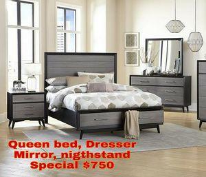 Queen bed, Dresser, Mirror, Nightstand for Sale in Tampa, FL