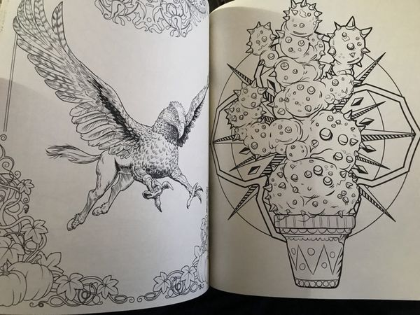 Harry Potter Magical Creatures Coloring Book For Sale In Los Angeles CA