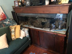 Fresh water fish aquarium 62LX20WX53H for Sale in Los Angeles, CA