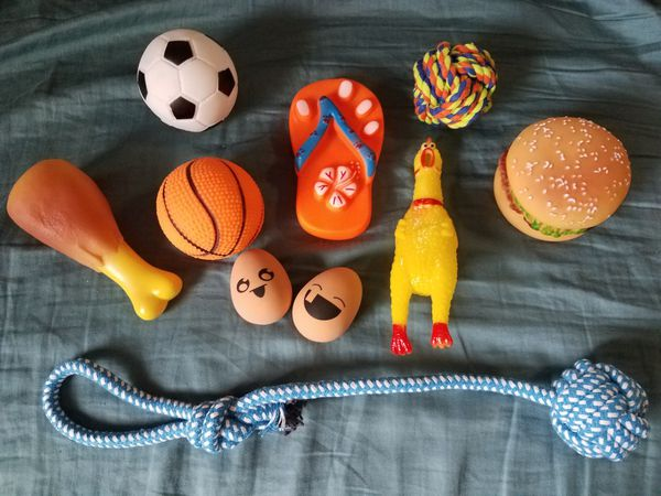 10 Squeaky Rope Dog Toys For Sale In Las Vegas Nv Offerup