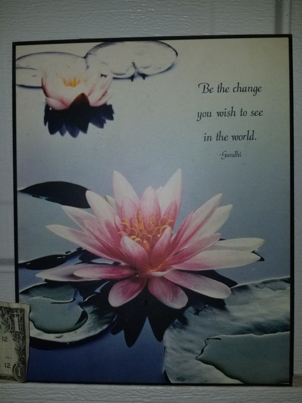 Inspirational Picture W Lotus Flower For Sale In Las Vegas Nv
