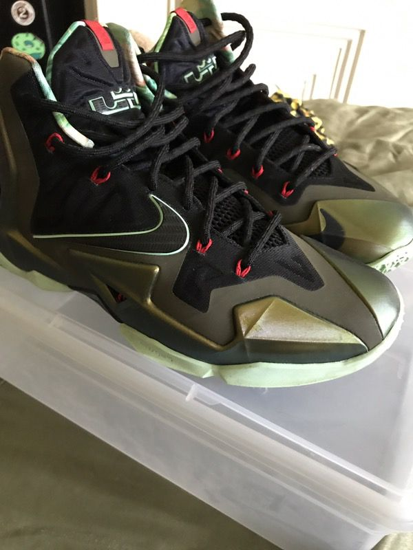 differently 8846d d8e00 VNDS Nike Lebron 11  Kings Pride  10.5