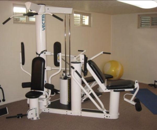Vectra on line home gym for sale in seattle wa offerup