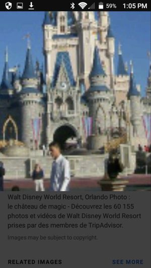 Disney world is 50$ ea for Sale in Tampa, FL