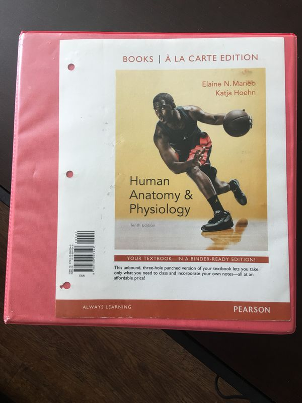 Human Anatomy And Physiology 10th Edition By Marieb For Sale In