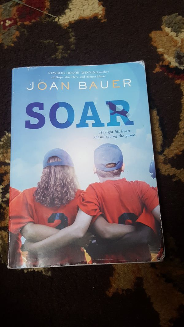 Image result for soar by joan bauer