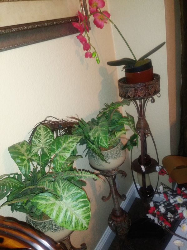 3 Rustic Candle Holders With Plants For Sale In Elk Grove