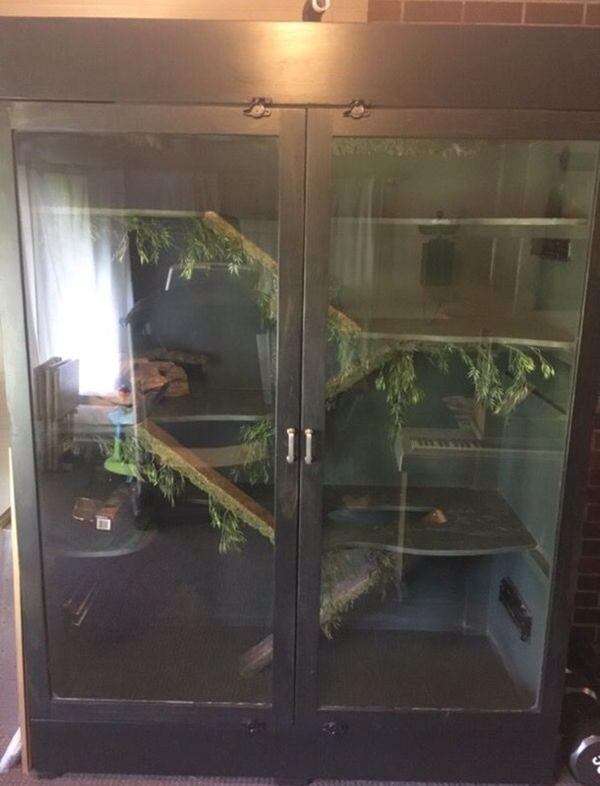 Large Reptile Terrarium For Sale In Tacoma Wa Offerup