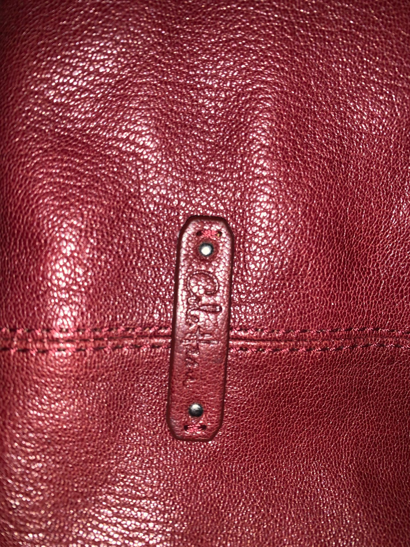Cole Haan purse/bag