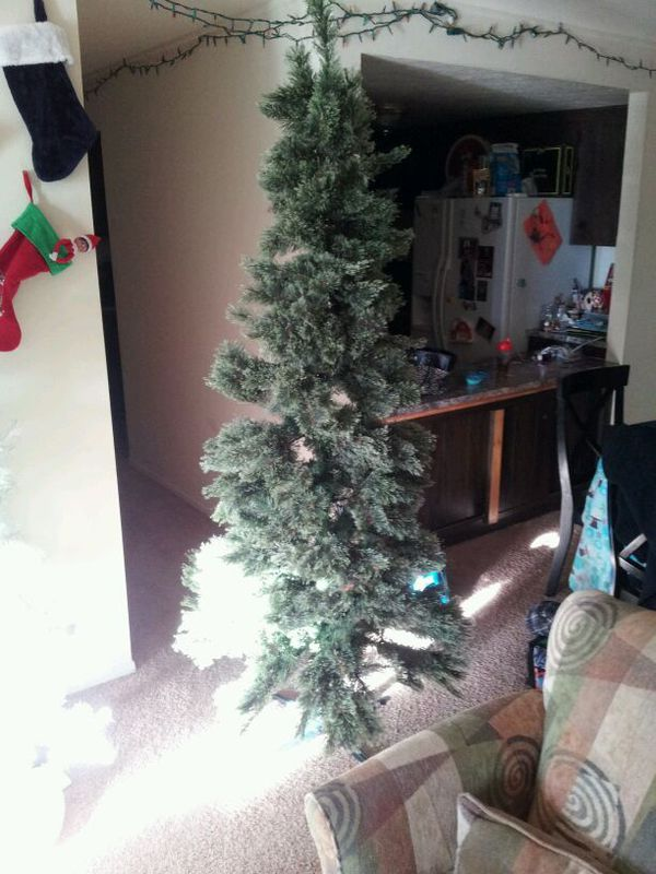 7ft nonlit branford spruce cashmere tree household in eastlake oh offerup