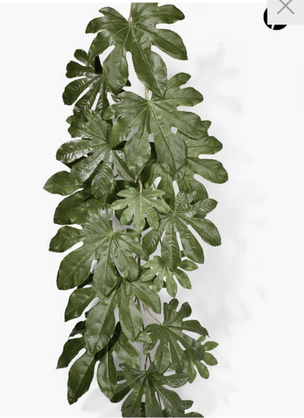 "52"" Fatsia Japonica Leaf Vine- set of 3"